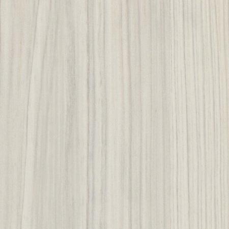 5109 cyprys włoski