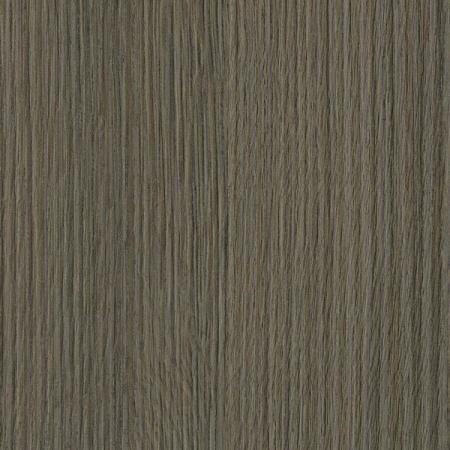 5503 dąb błotny ciemny