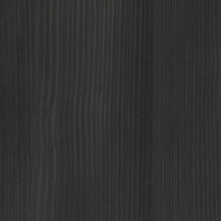 8509 sosna norweska czarna