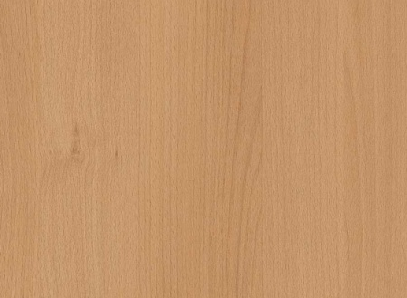 H3911 ST9 buk tauern naturalny