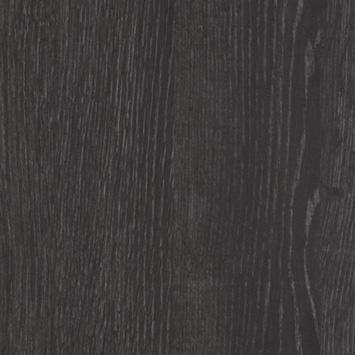 D 3162 WG Dąb czarny