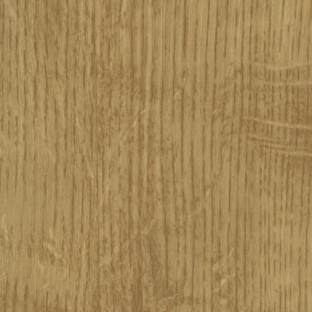 0781 dąb jasny